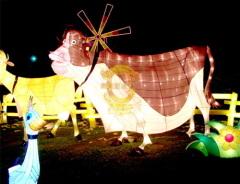 festival color lantern