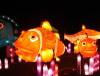 Festival lanterns for lantern show