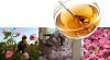 Beta-damascenone Fragrant Ingredients Rose Essential Oils Herb Medicine