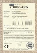 CE Inverter MMA Welder
