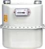 gas meter G10