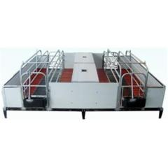 High quality galvanized pipe pig farrowing crates
