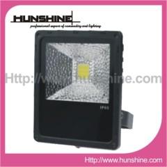 30W Plastic Outdoor Luminaire Lighting