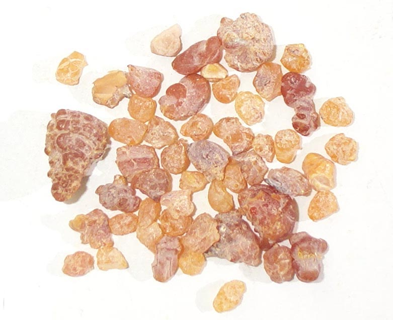 Woody Spicy Camphoric Healing Therapeutic Frankincense Essential Oil