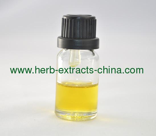 Ginger Oil as Analgesic Antibacterial Antiinflammatory Antioxidant