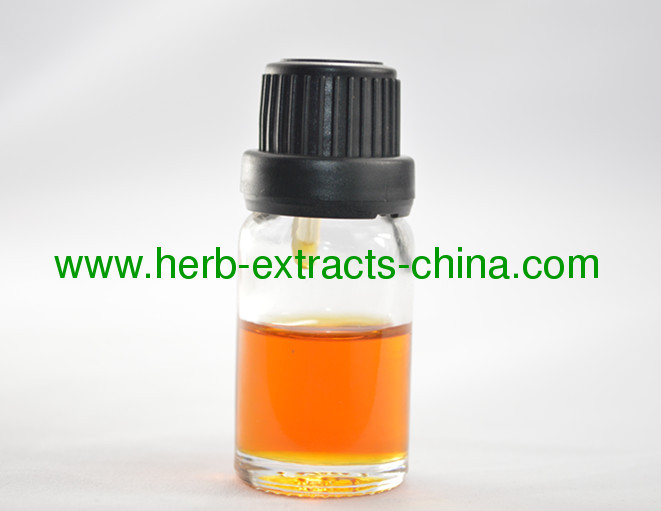 Traditional Medicated Oil China Ginger Root Essential Oil Synergistic Healing