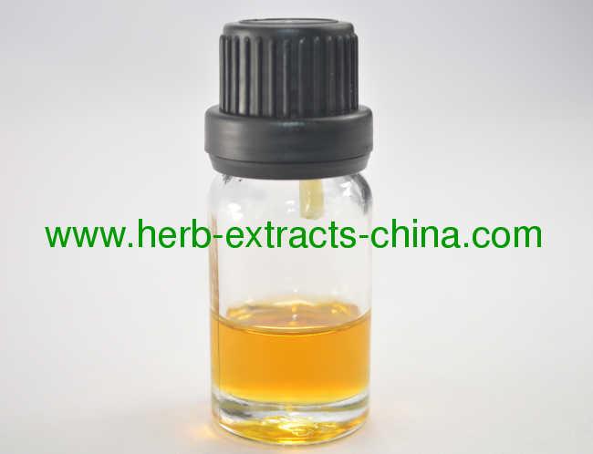 Jasmine Pure Essential Oil