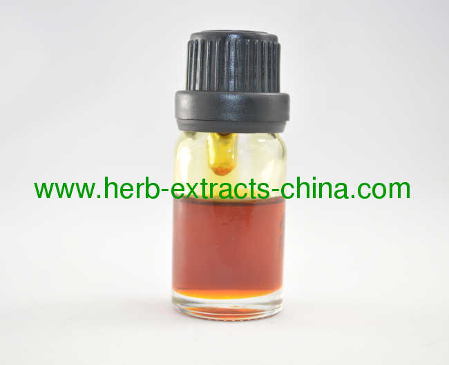 Chinese Angelica Root Essential Oil