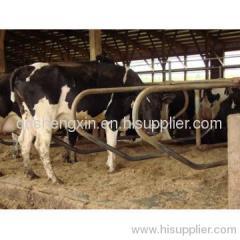 Attrezzature agricole bovini a stabulazione libera