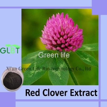 Red Clover Extract isoflavones Plant Extract