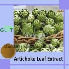 Artichoke Leaf Extract