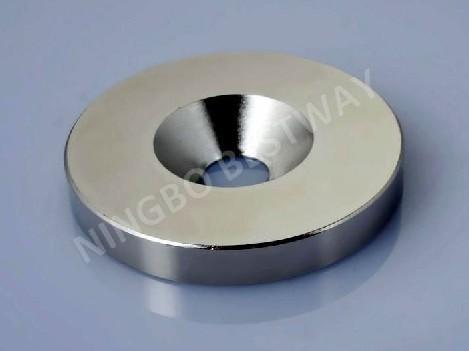 Neodymium Magnet with Screw Hole