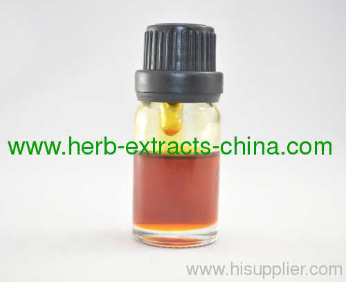 Chinese Angelica Root Essential Oil; Pure and Natural