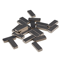 Nickel Coated Sintered Ndfeb Magnet