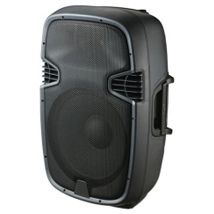 "12"" Stage performance audio"