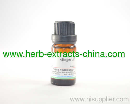 10ml Healing Ginger Essential Oil Pure