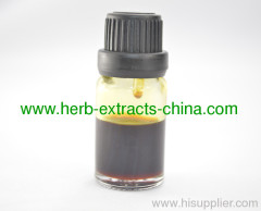 High Gingerol Specification Ginger Root Essential Oil