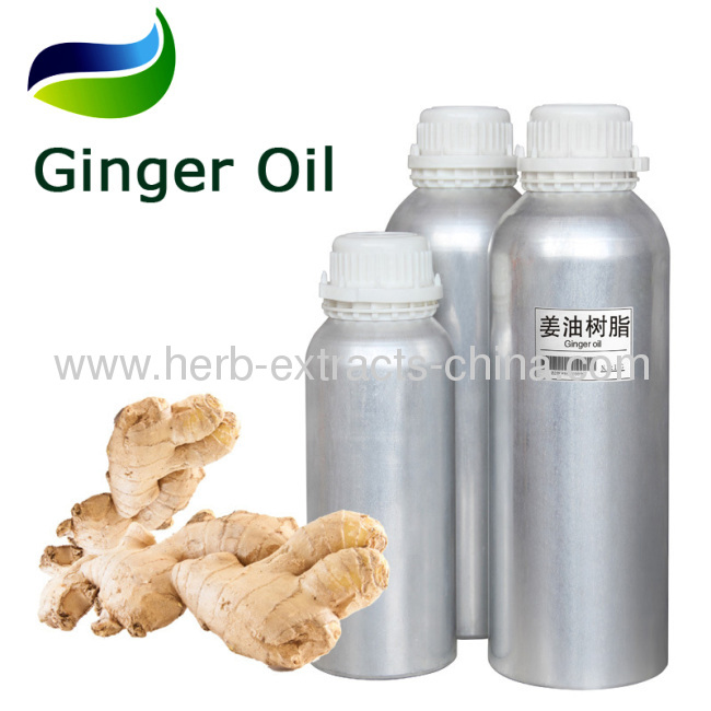 chinese pure yellow or greenish-yellow Ginger Oil with high quality as flavouring agent