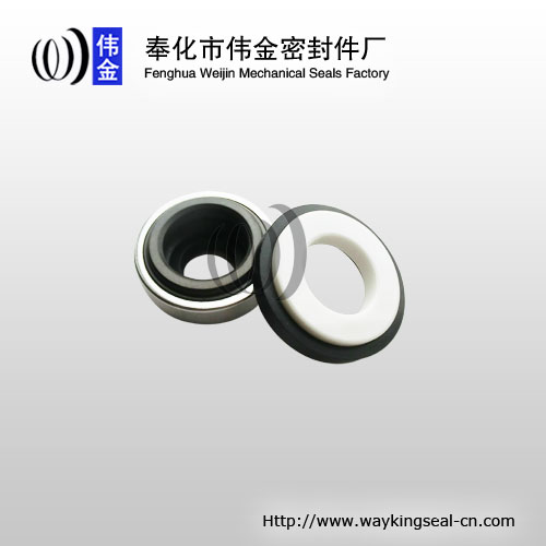 mechanical face seal of pumps