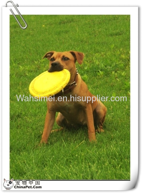 Soft silicone flying disc for pet