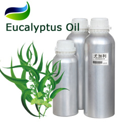 Natural Eucalyptol Ingredients Eucalyptus Oil