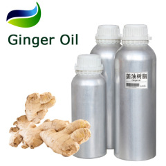 GMP Organic Certified Ginger Root Oil
