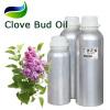 Synergistic Clove Bud Oil Healing Fragrance