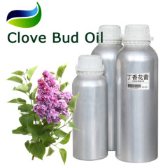Organic Certified Clove Bud Oil