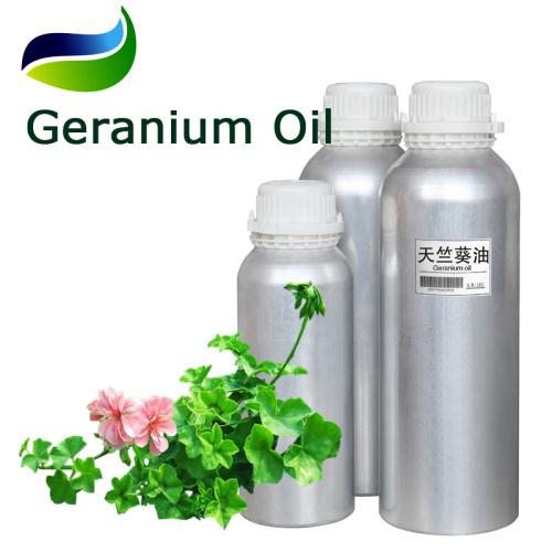 Biochemical Flavoring Ingredients of Geranium Oil