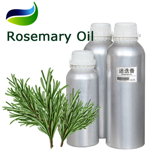 Pure Rosemary Oil extracted from Rosmarinus Officinalis