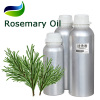 Perfume Fragrant Rosemary Oil China Sources