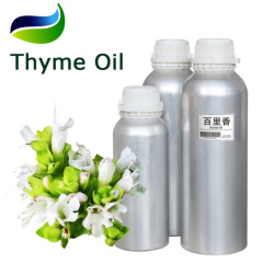 Pure Thyme Essential Oil as Therapeutic Healing Cultivated