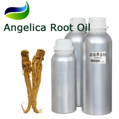 Pure Angelica Root Oil extracted from Angelica Sinensis
