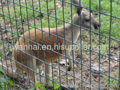 animal defence wire mesh fence