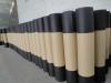 01 ASTM asphalt waterproof roofing felt