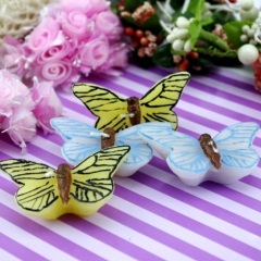 Butterfly Craft Candle