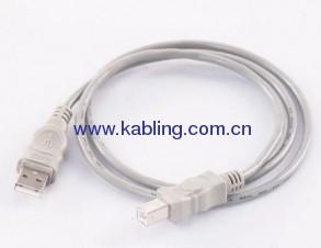 USB 2.0 A M TO BM
