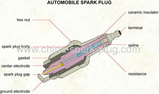 NGK spark plug for the 80hp Rotax 912 the 130hp and 160hp