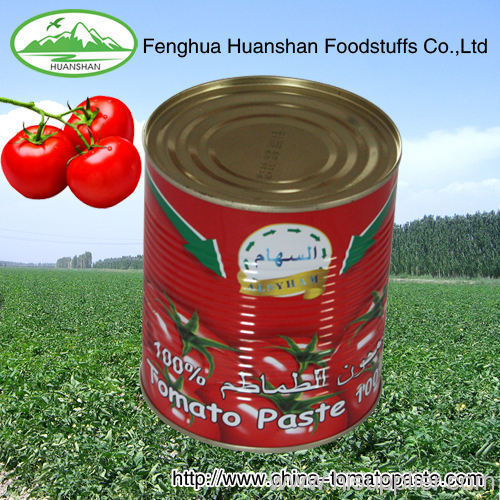 210g*48tins tinned food tomato paste