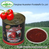 Asia canned tomato paste