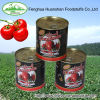 800g*12tins Canned tomato paste