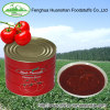 140G*50tins brix 28-30% canned tomato paste