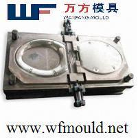 Plastic Toilet cover mold