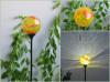 Glass Ball Solar Stick Light