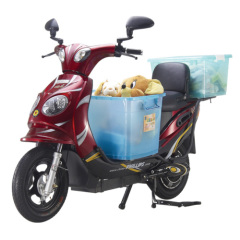 adult electric motor scooter 350W-5000W