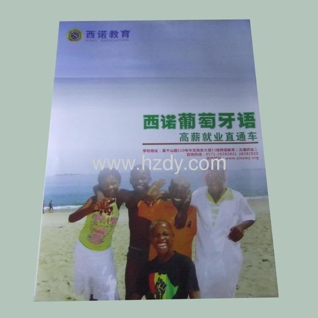 4 color printed pamphlet for products brochure Saddle Finisher