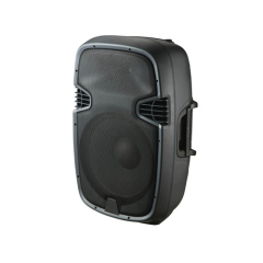 "8""2 Way Plastic Speaker Box"