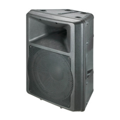 "12"" 2 way professional Audio Box"