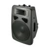 """12"""" 2 Way Speaker Box"""