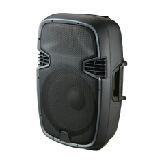 12 Inch 2 Way Plastic Speaker Box